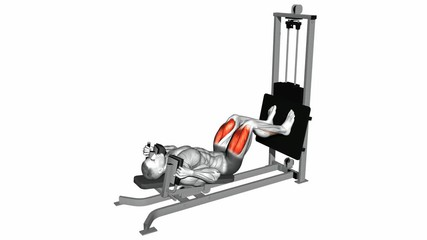 Lying Machine Squat