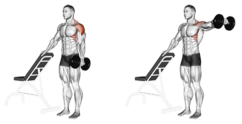 Supported Standing One Arm Dumbbell Lateral Raises.