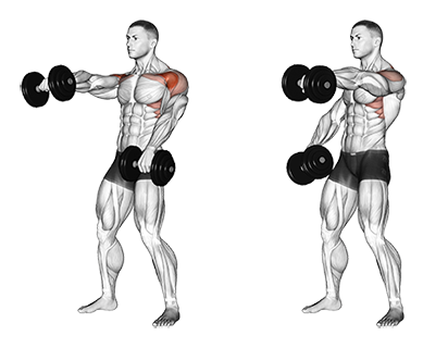 Standing Alternate Dumbbell Front Raises