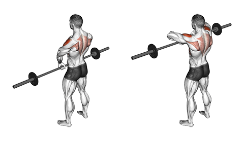 Standing Narrow-Grip Upright Rows