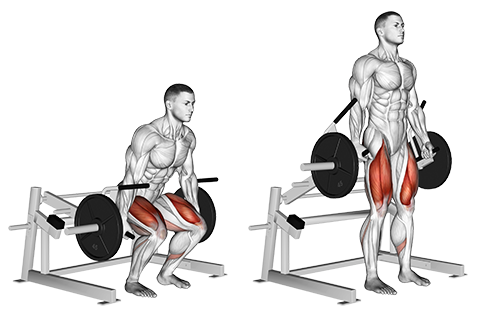 Lever Deadlifts.