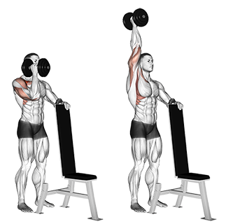 Supported Standing One-Arm Dumbbell Shoulder Press
