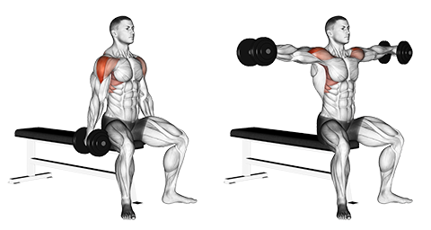 Standing Dumbbell Lateral Raises