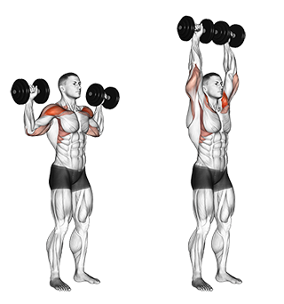 Standing Dumbbell Shoulder Press