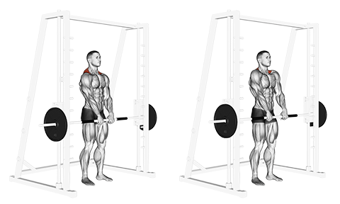 Standing Front Smith Machine Shrugs