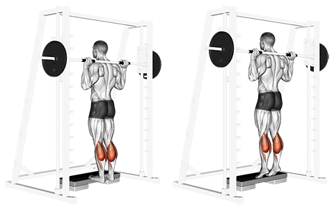Shouldered Smith Machine Standing Calf Raises