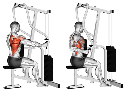 One-Arm Seated Cable Row Machine