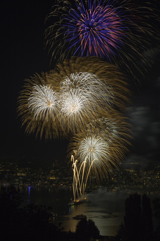 Fireworks Web.jpg