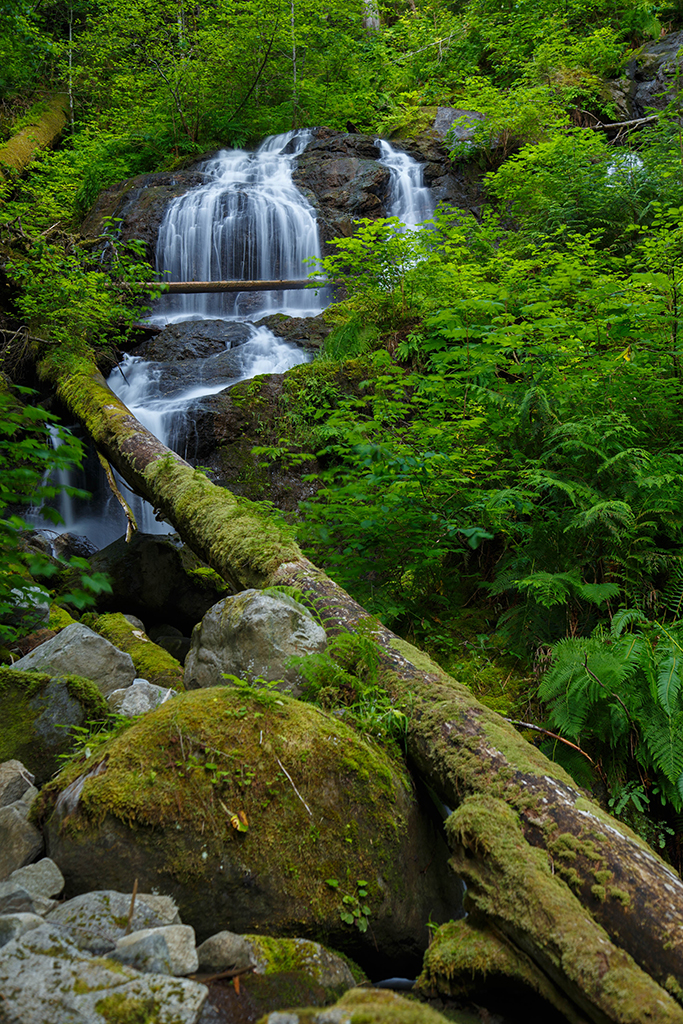 Waterfalls-4 Web.jpg