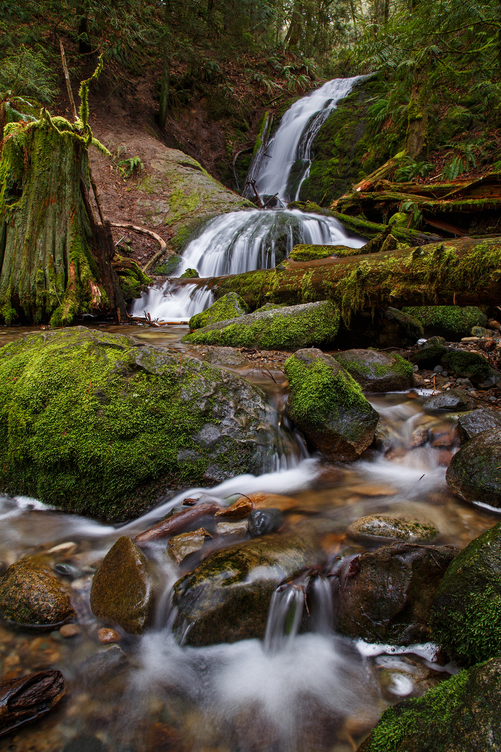 Coal Creek Falls web.jpg