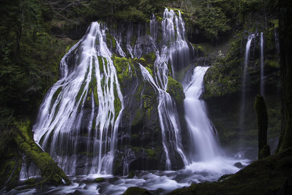 Panther Creek Falls Web.jpg