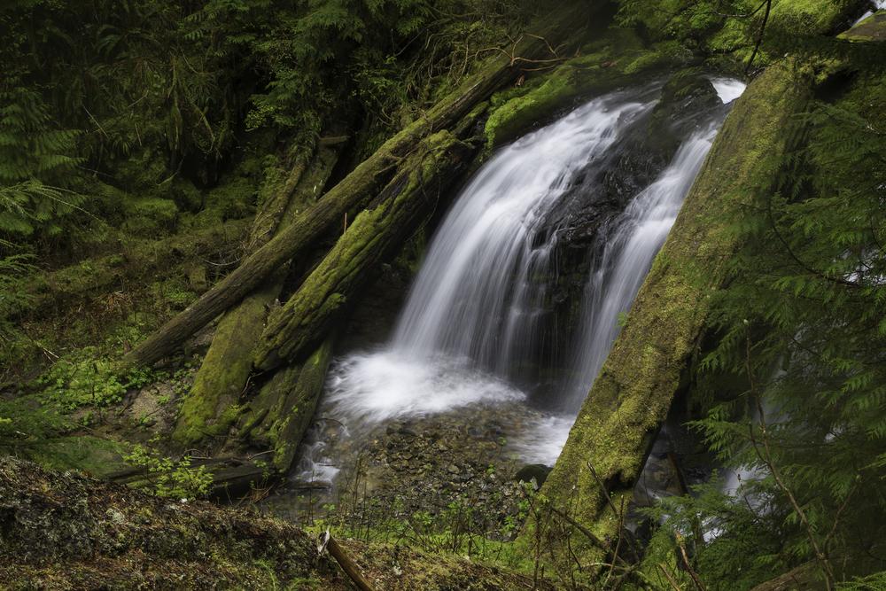 Snakeberry Falls Web.jpg
