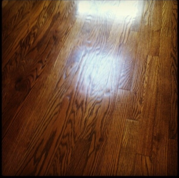 Seeing everything and nothing while looking at the hardwood floor.