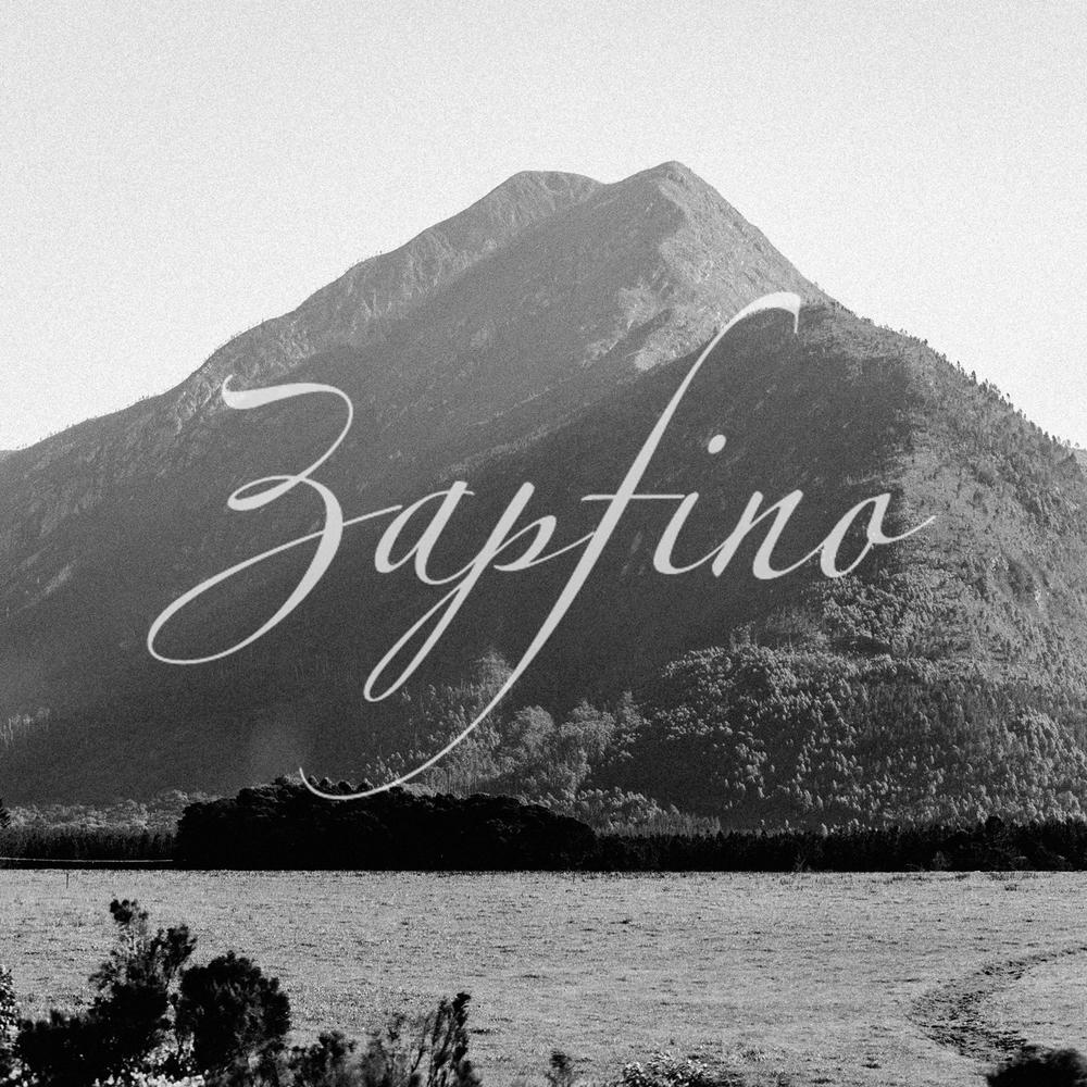 11 alternative fonts to zapfino frank derfrankie neulichedl altavistaventures Choice Image
