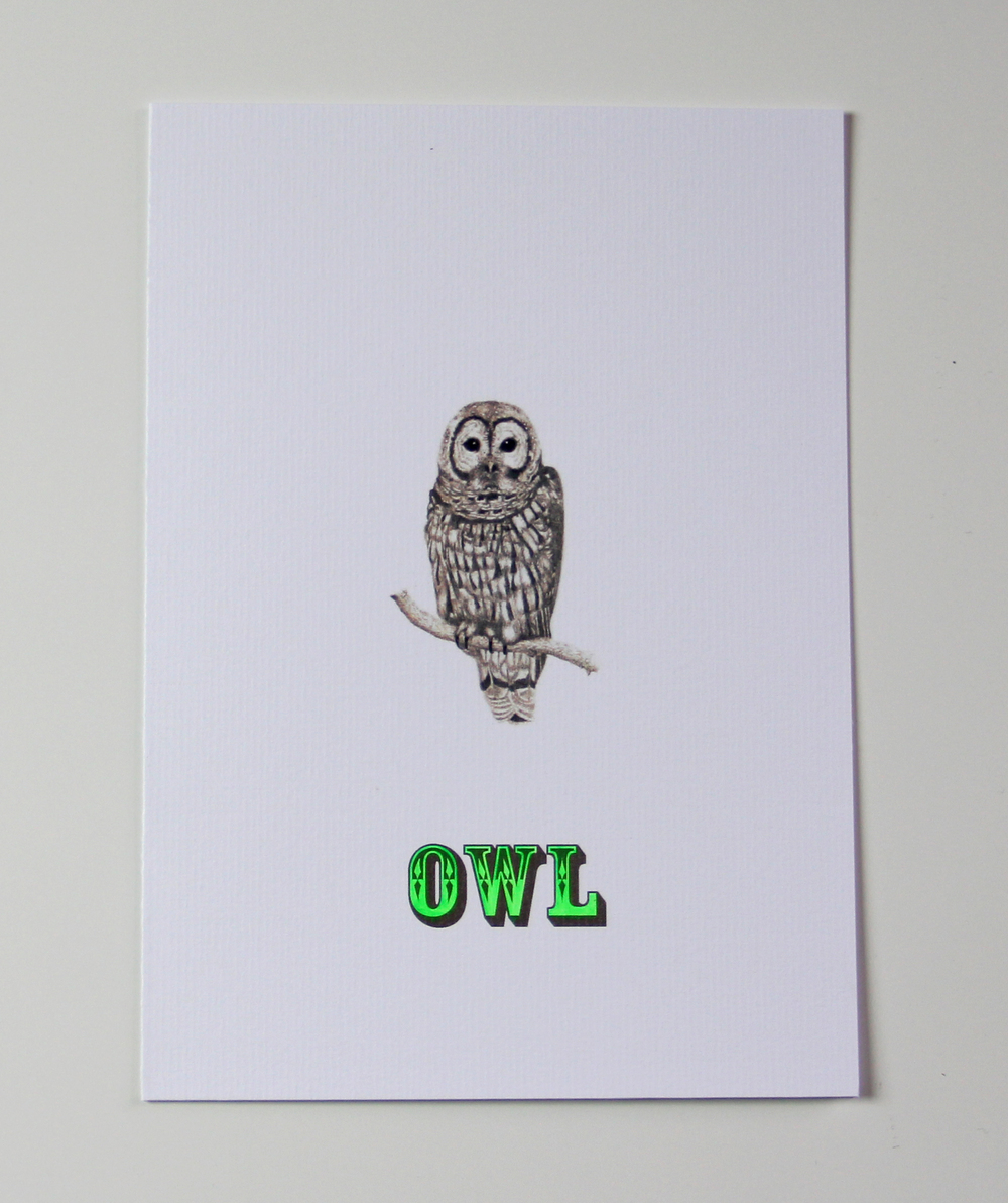 SHOP OWL G-I-D CARD.jpg