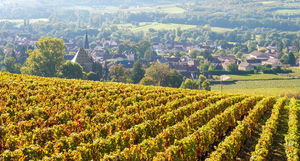 Foto: www.visitfrenchwine.com