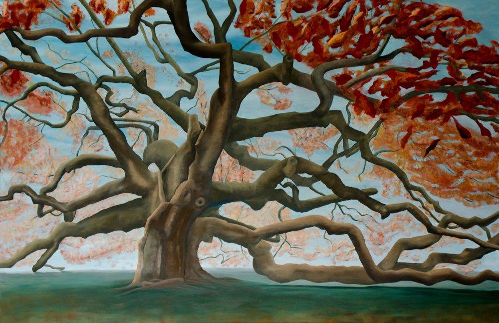 Outdoor-Tree