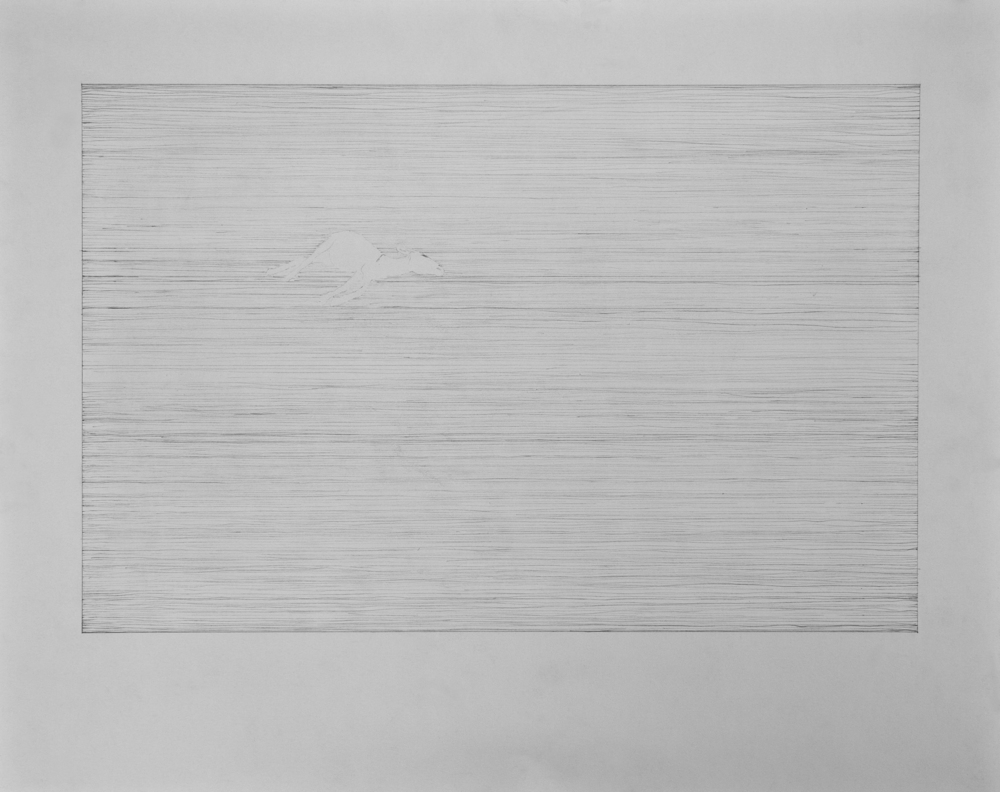 Graphite on paper  2011, 61x48cm