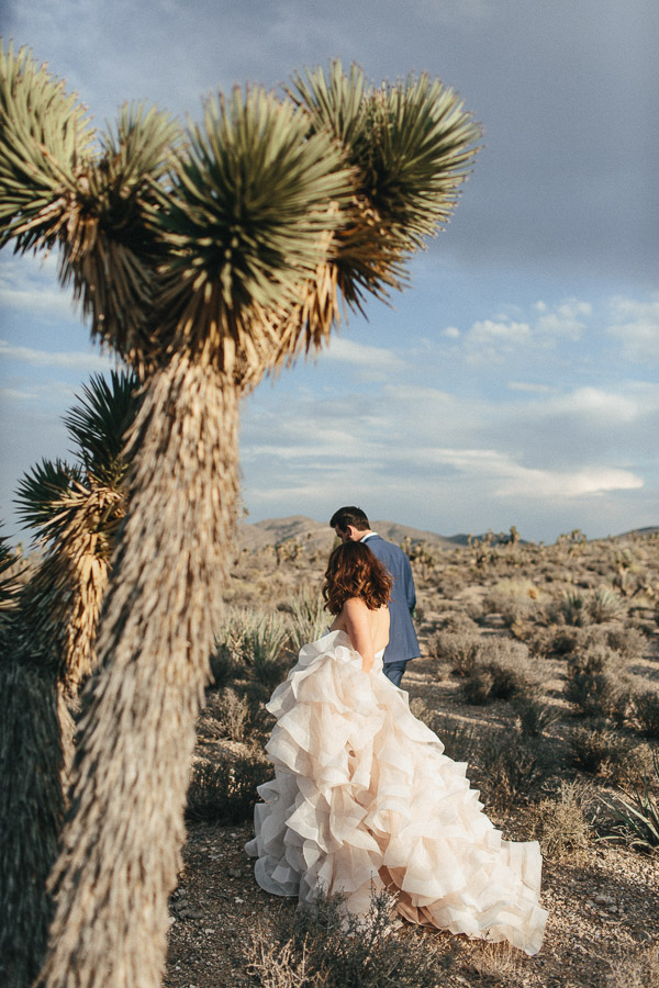 las_vegas_nevada_lee_canyon_elopement_photography-210.jpg