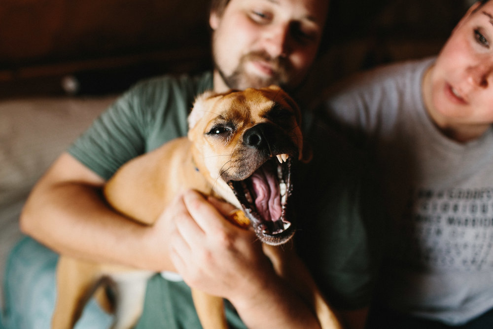 iowa_city_engagement_adventure_prairie_graduate_at_home_dog_couples_downtown_wilsons_orchard_1095.jpg