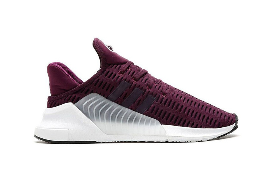 CNK-adidas-climacool-berry-2017.jpg