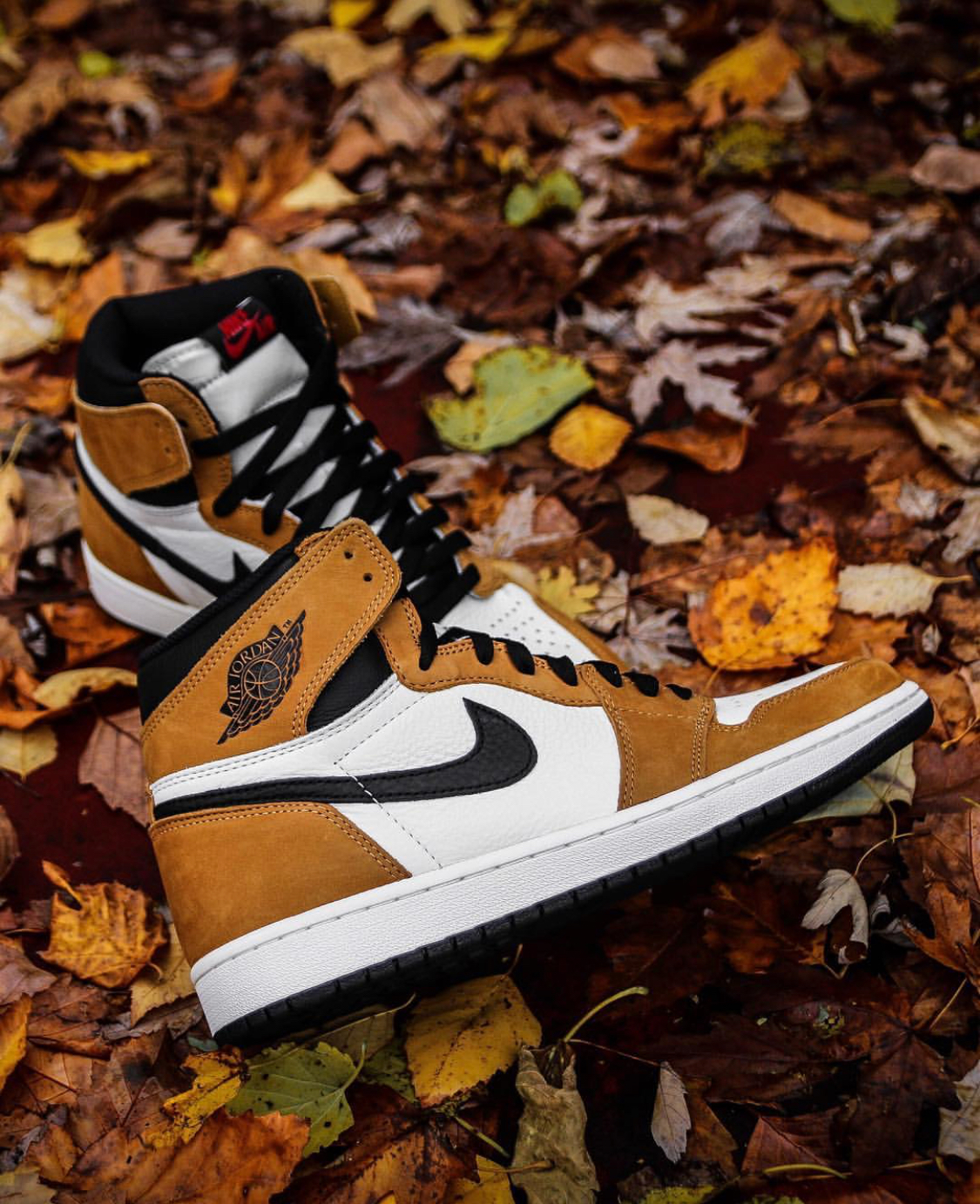 48f356399eb8 The Air Jordan 1  Rookie of the Year  Releases This Week — CNK ...