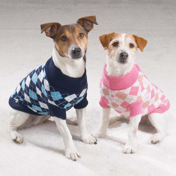Sweater pets