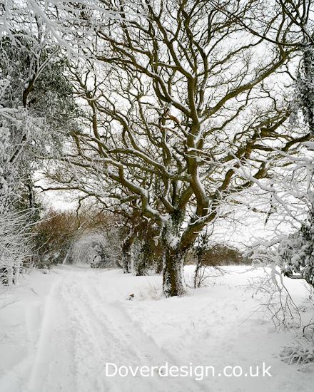 Dover Photographer - snow scene