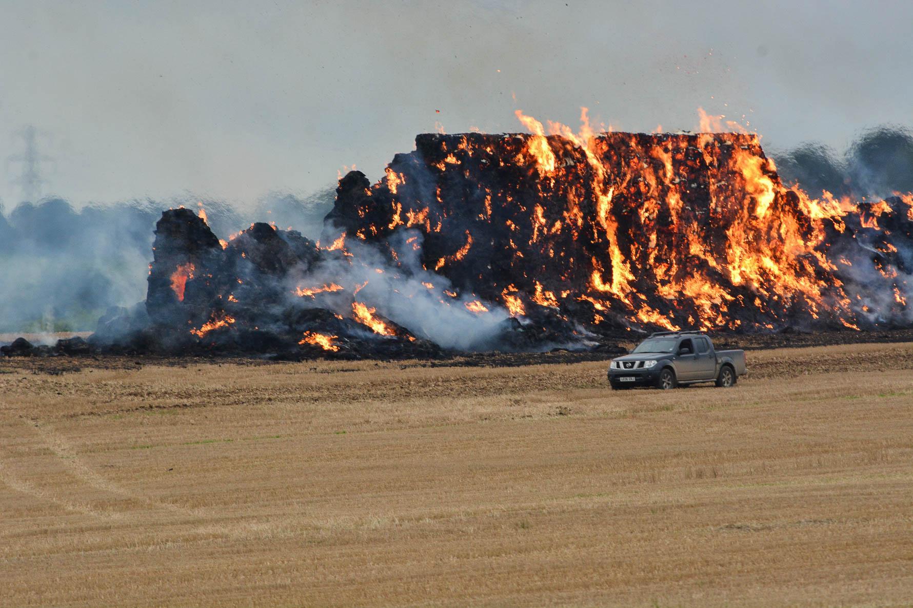 field fire-7389