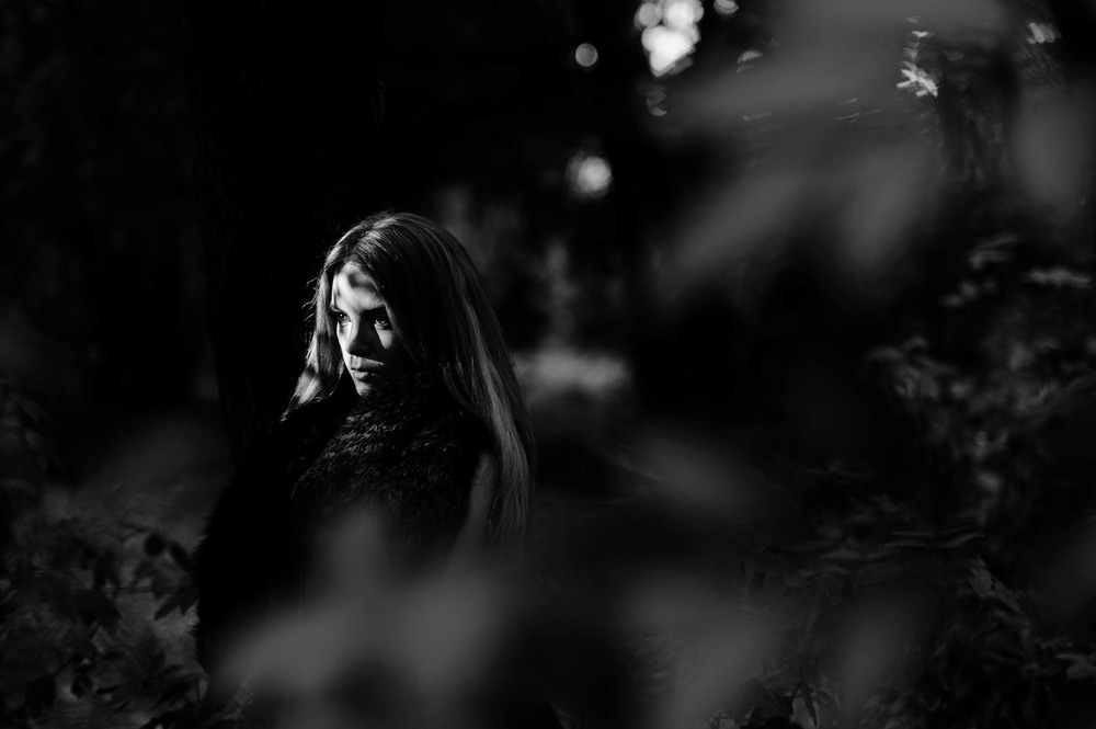 woods-20140828592