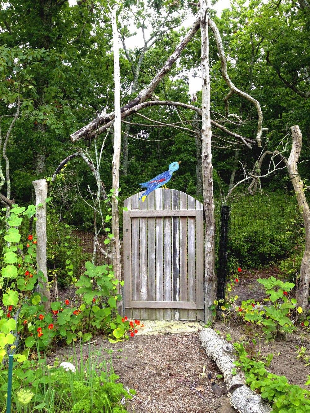 Low Res Bluebird of Happiness.jpg