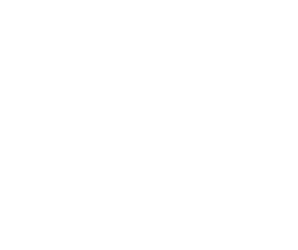 southbrew_white.png