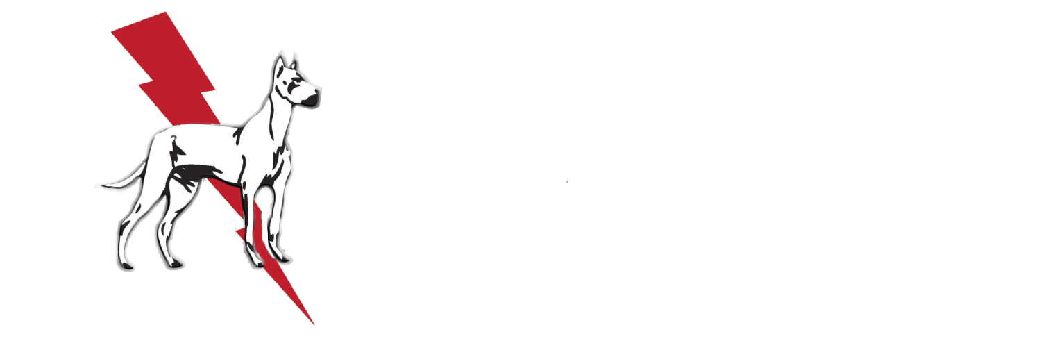 Dane & Associates Electric Company