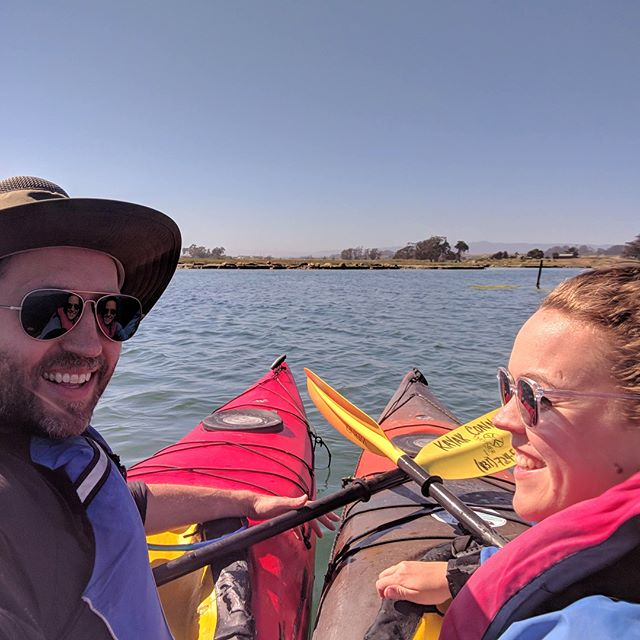 Kayaking with seals and otters!