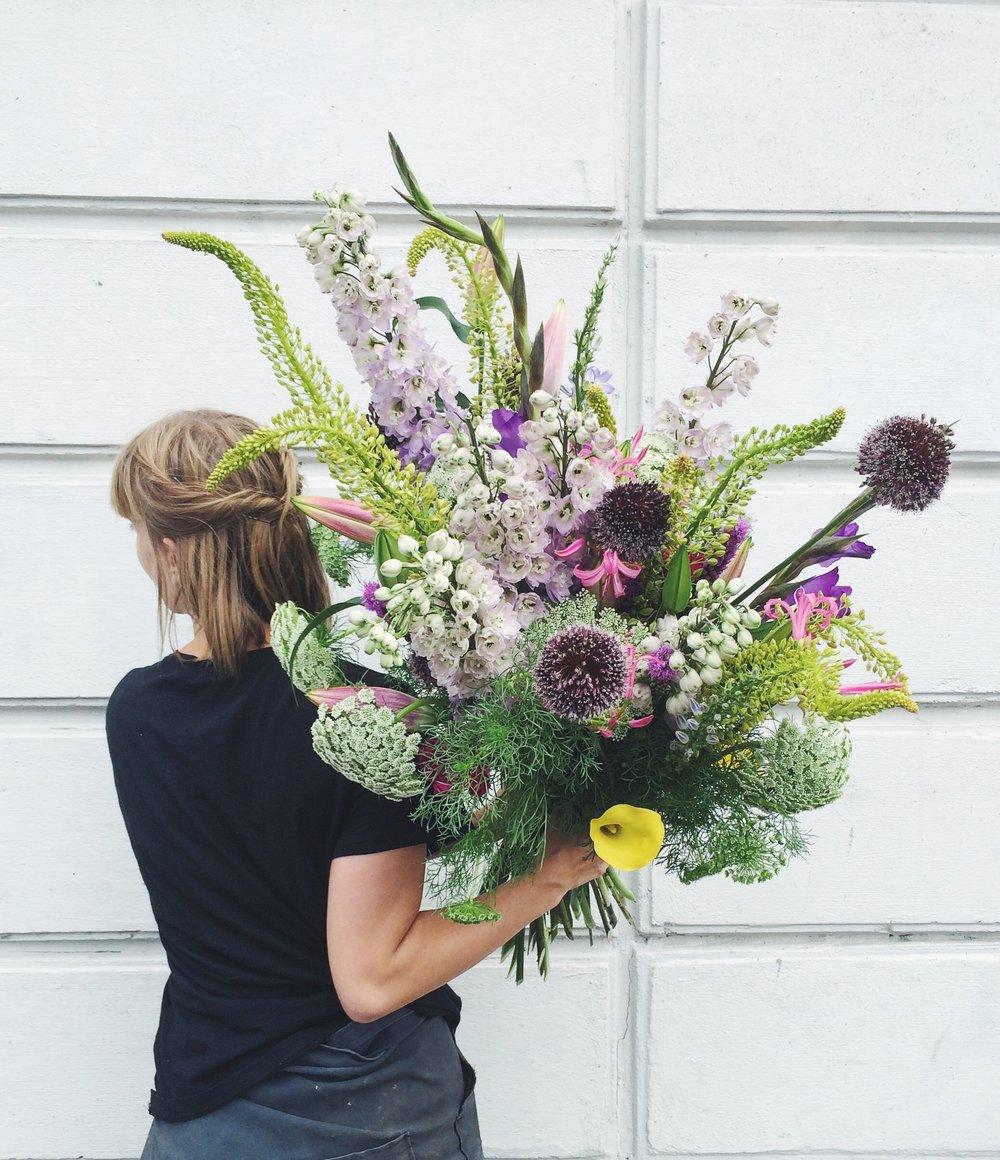 EVERYDAY PLANTS & FLOWERS -