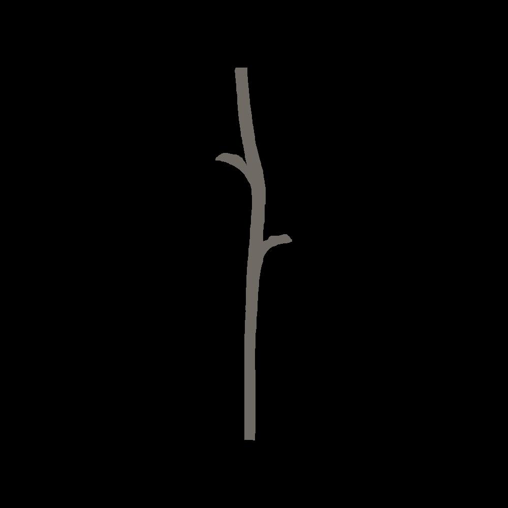 Logo brun-01.png