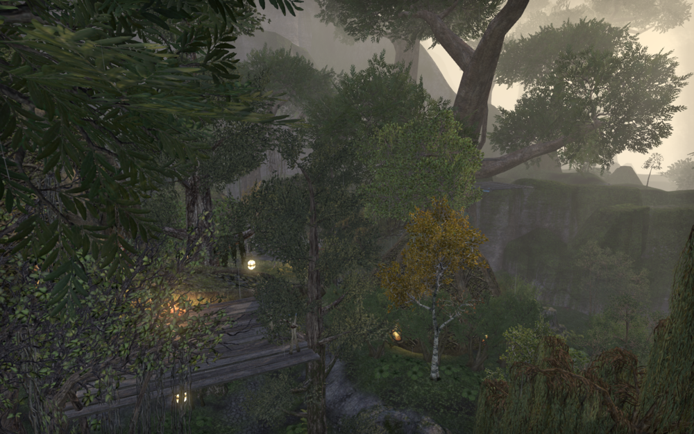 Dranacea's Tree Fort