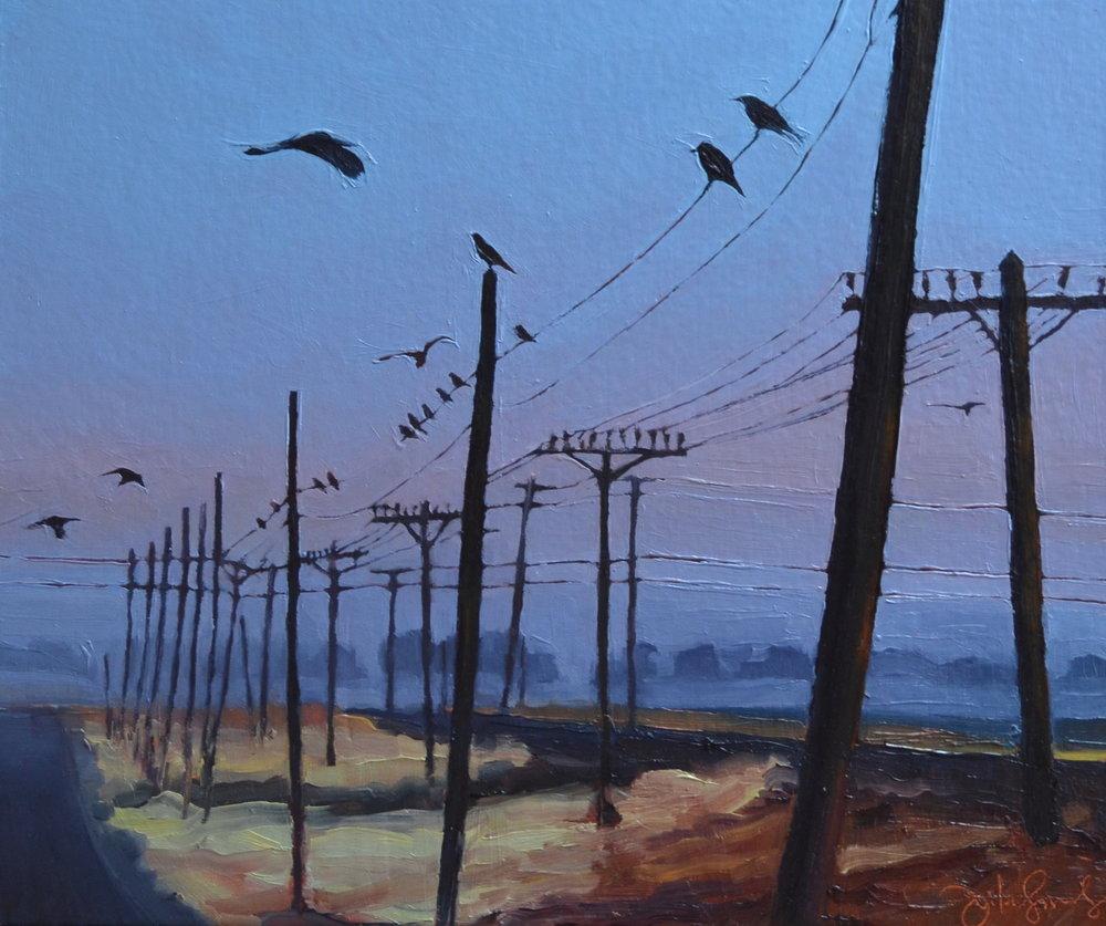 North F, Birds
