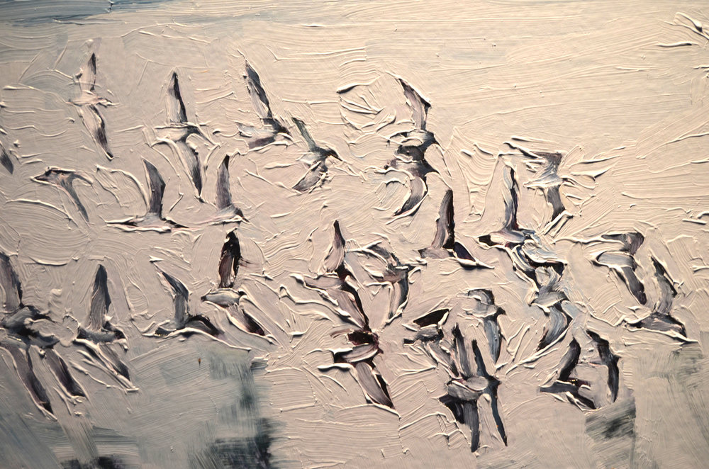 detail from  Birds, Shore.  2016. Oil on Panel. 16 x 24 inches