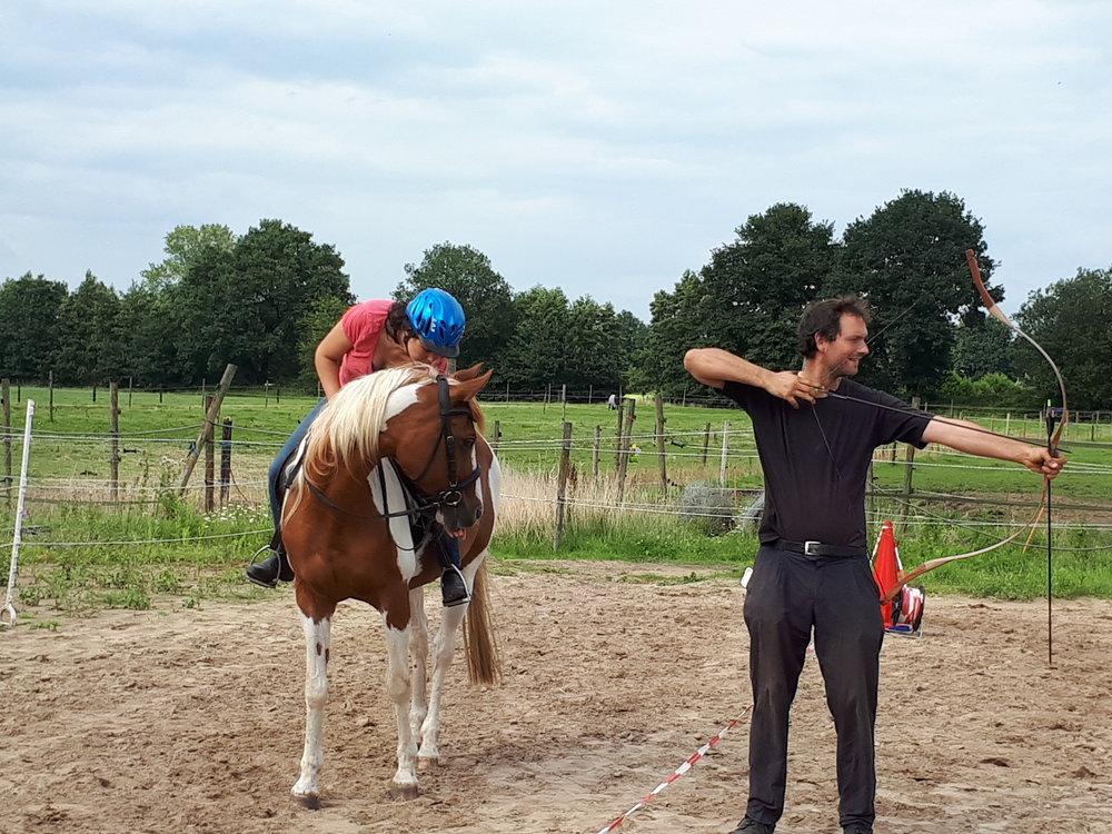 Schriktraining paard.jpg