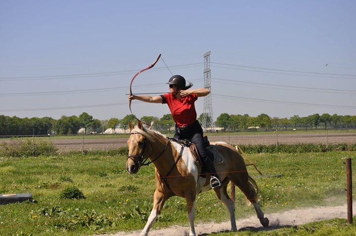 Wedstrijd boogschieten te paard.JPG