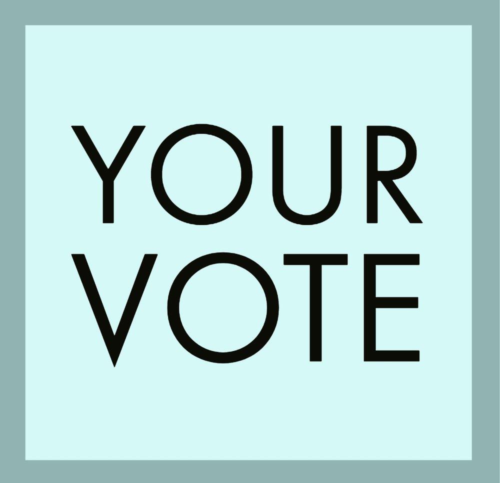 Your Vote 11-6-18.jpg