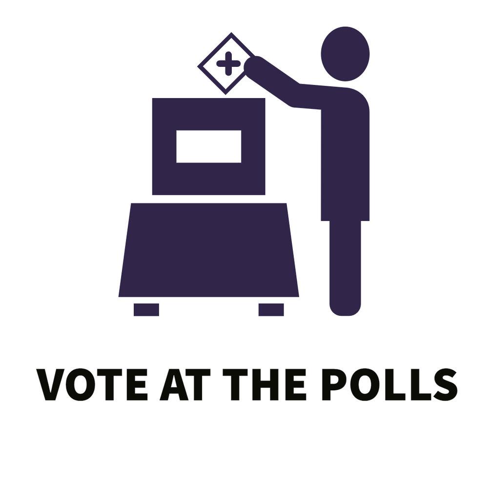 Vote at Polls.jpg