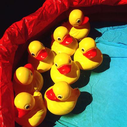 CAB2 Vintage Ducks.jpg
