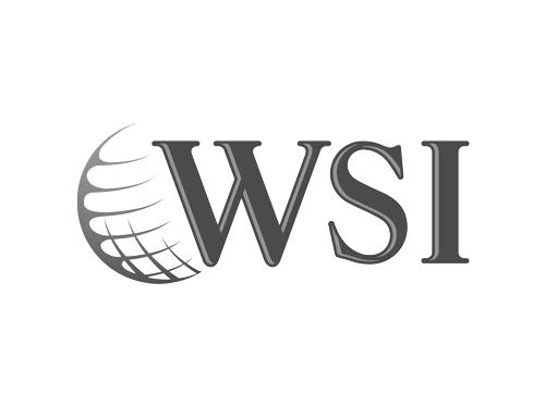 WSI.png