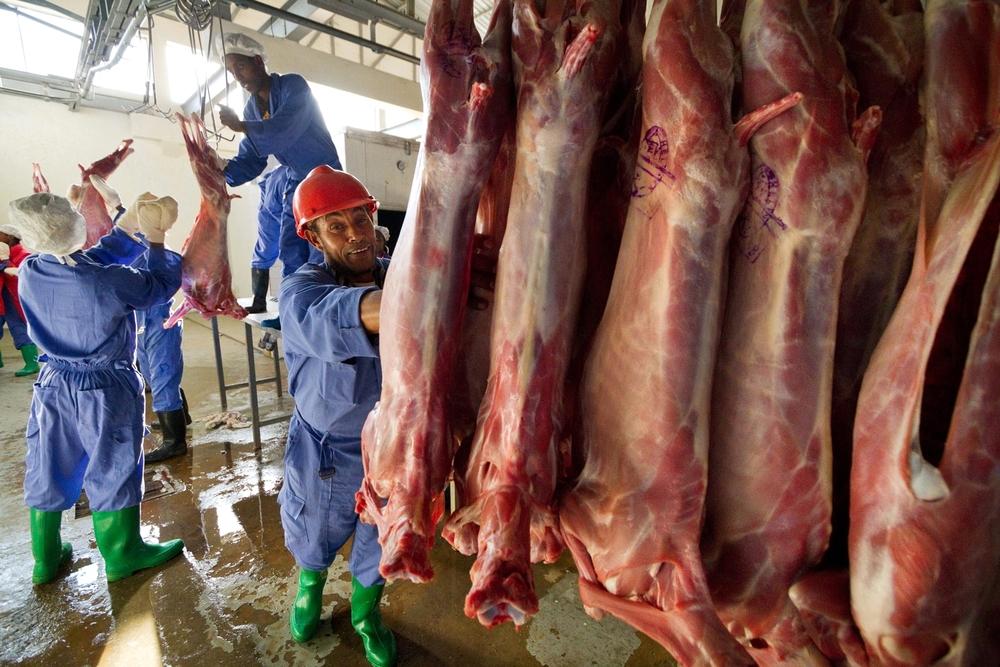 ethiopia-meat-export-slaughterhouse.jpg
