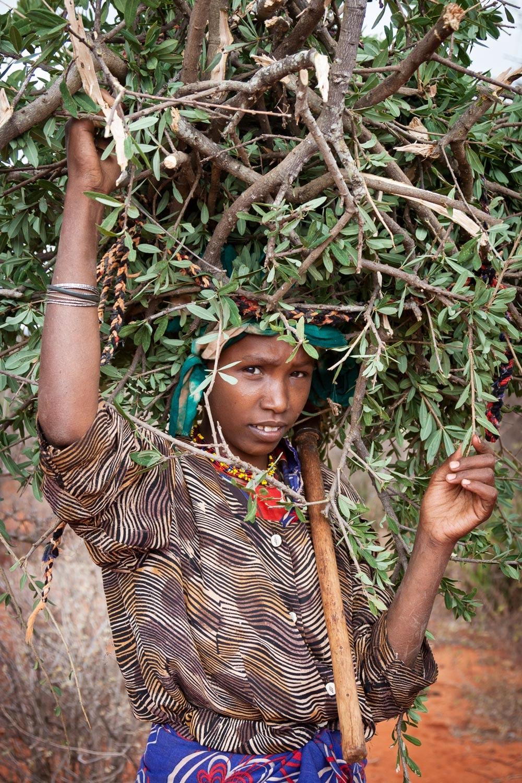 ethiopia-garre-woman-woodcutter.jpg