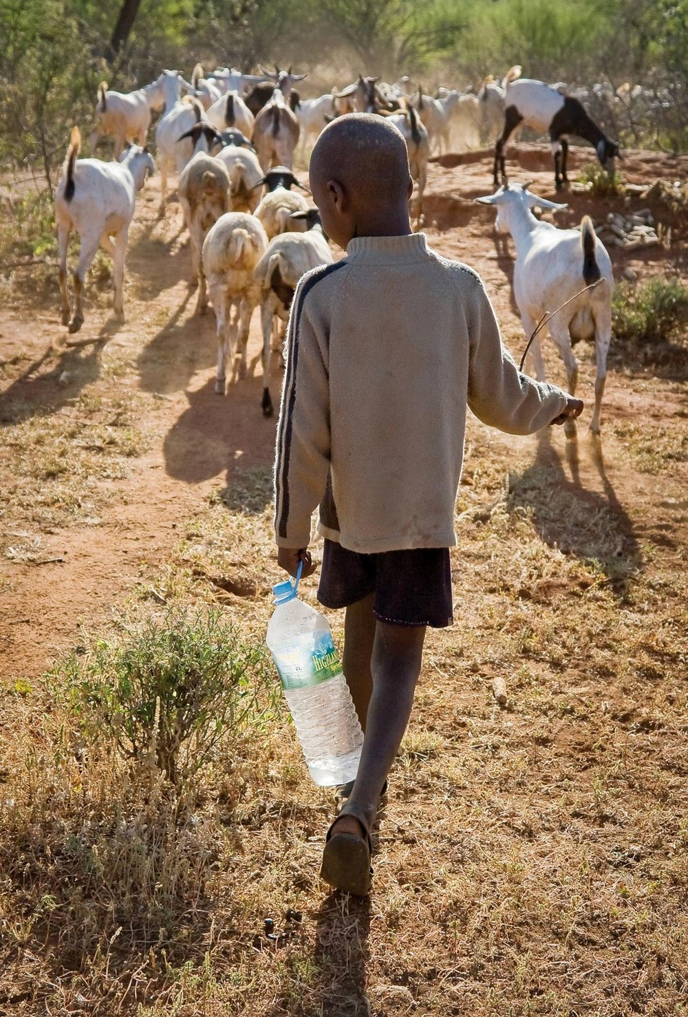 OPEN THIS PUBLICATION  THE SCHOOL OF LIFE: EDUCATION IN A PASTORALIST COMMUNITY