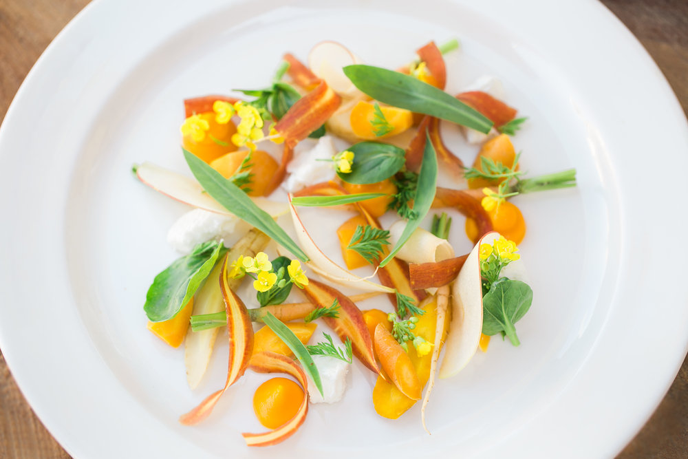 Local Provisions fermented carrot and apple salad with local feta_photo by Meghan Rolfe Photography.jpg