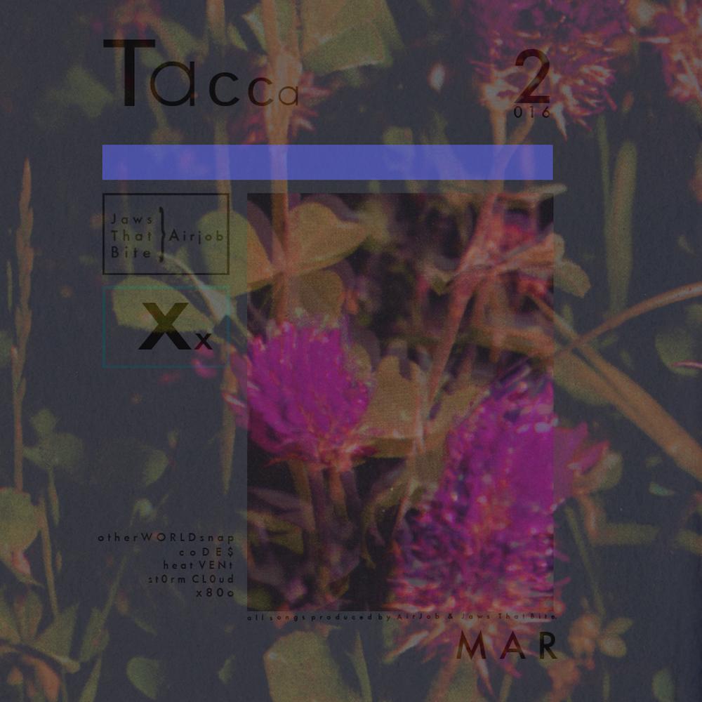 Tacca_artwork.jpg